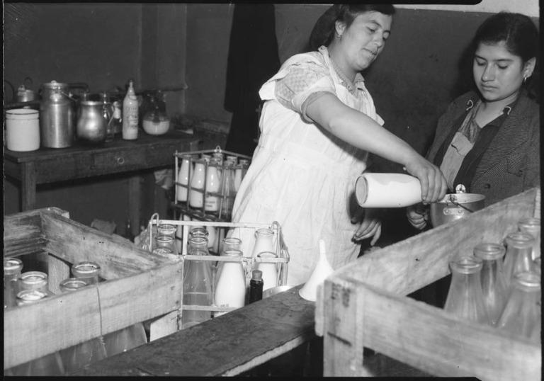 Crónica sobre la leche en bogota 1948